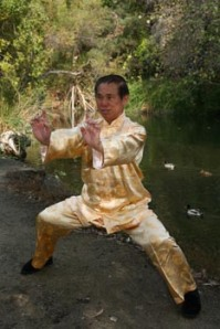 All kung fu styles have characteristic stances used to develop force. Grandmaster Wong Kiew Kit demonstrates Golden Bridge, the most characteristic stance chosen for force training in Southern Shaolin kung fu. Image taken from www.shaolin.org